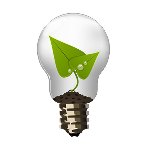 Enlightened IT Services logo